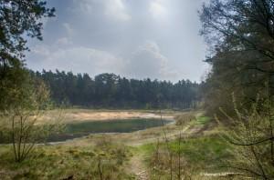 Heidelandschaft_See1
