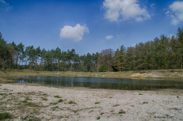 Heidelandschaft_See2